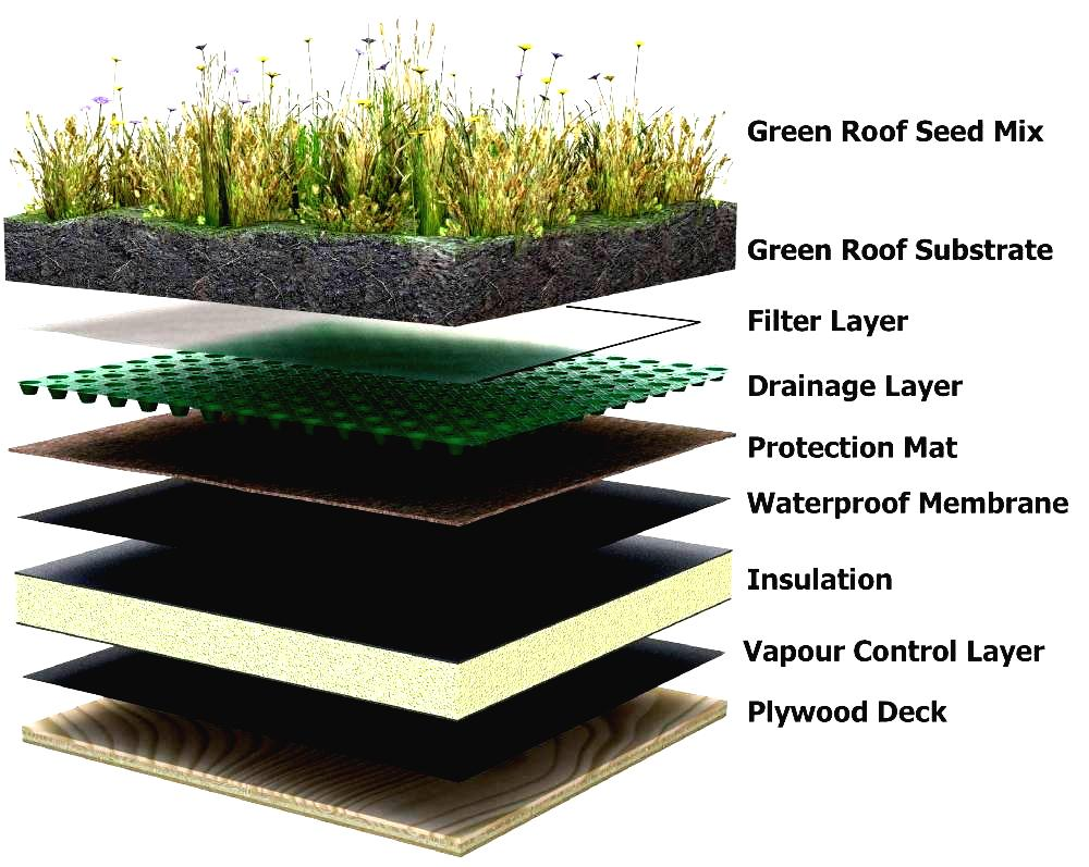 Green Roof Installation R Amp D Roofing